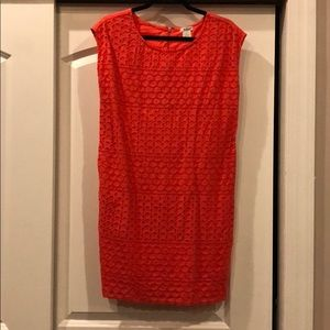 Cole Daniel coral/orange eyelet dress